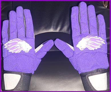 RECEIVERS GLOVES, LIONS, BACK